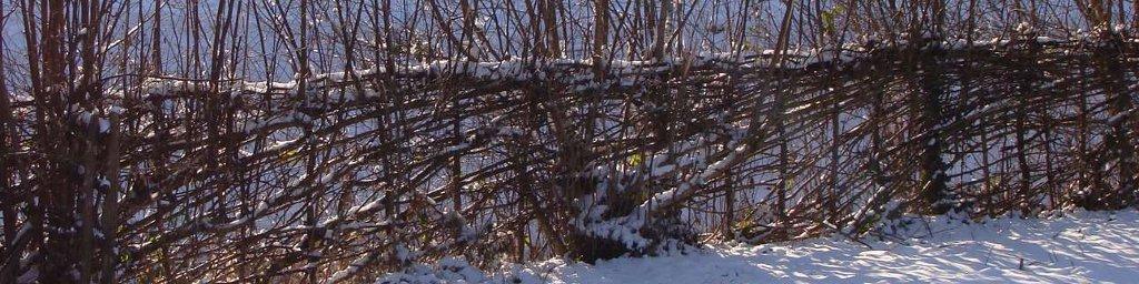 Plessage sous la neige